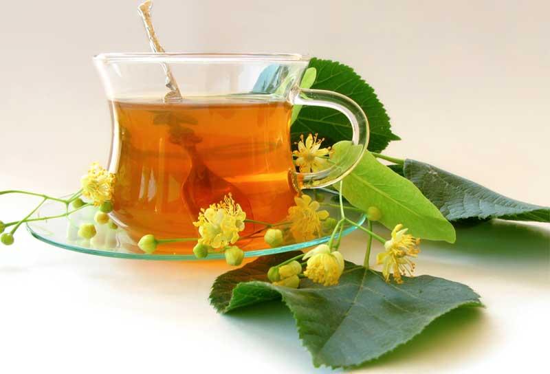 Можно ли заваривать цветы мяты в чай