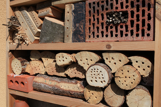 how to make bee hotel